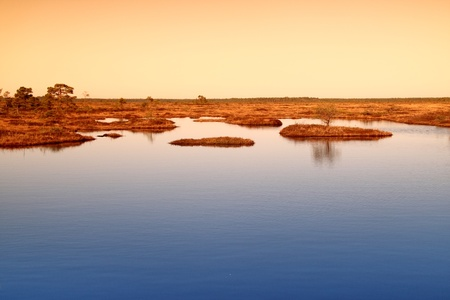 Marsh landscape in Estonia with lakes and small islands in it