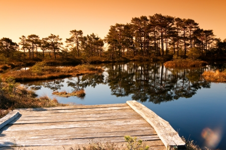 Marsh landscape in Estonia  Lake in foreground with swimming platform and trees in background