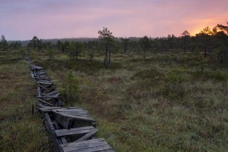 An old broken walkway in a swamp in the morning at sunrise Stock Photo