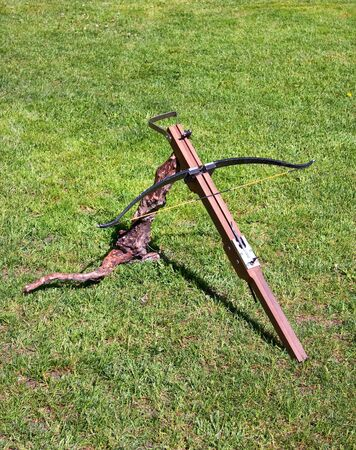 crossbow: Brown crossbow on green grass