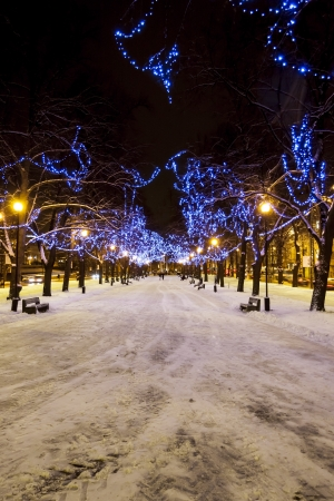 Snowy avenue with trees decorated with blue Christmas lights in Tallinn, Estonia Stock Photo - 16297837
