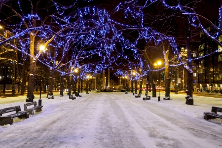 Snowy avenue with trees decorated with blue Christmas lights in Tallinn, Estonia