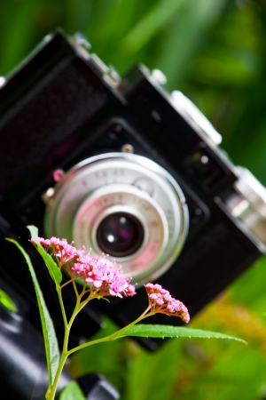 Closeup of a classical Russian made SLR film camera knwon as Cmena near flower Stock Photo - 16798659