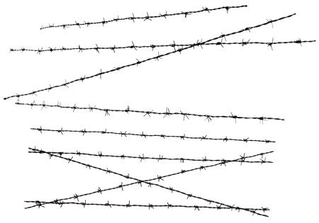 barbed wires: Varios alambres de p�as aisladas sobre fondo blanco