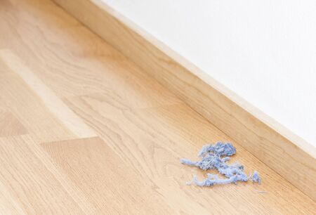 tidiness: Bunch of blue dust rolls in a corner on the floor