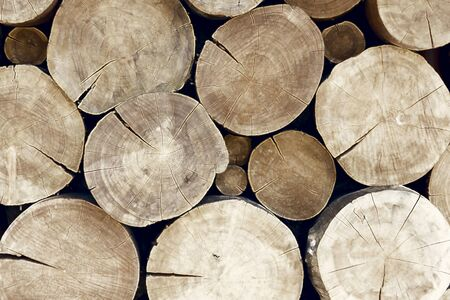 cut logs: Many large and thick cracked tree beams in a pile