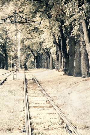 oldstyle: Old style photo of a straight railway surrounded by trees