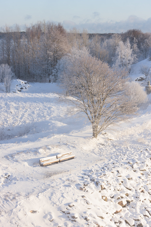 Two snowy beches covered with snow in a park at winter Stock Photo