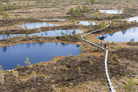 People walk on narrow timber made footpath in a bog in Rapla county in Estonia