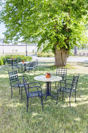 Cafe chairs and table under large tree in a park in summer