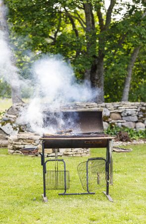 Smoking and flaming barbecue in a garden in summer Stock fotó