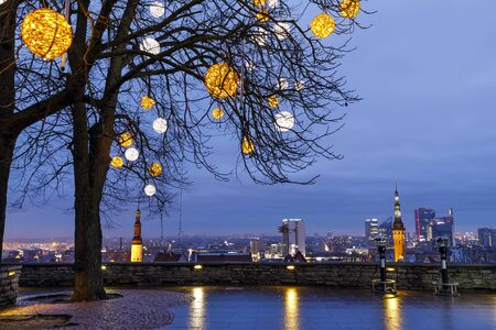Tall bare tree decorated with illuminated balls at a viewpoint in Tallinn, Estonia
