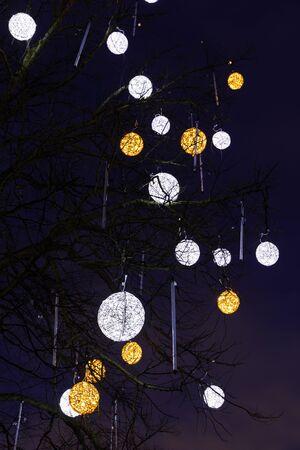 Illuminated white and yellow decorations on a bare tree in Tallinn, Estonia Stockfoto
