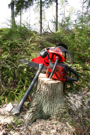 logger: Logger equipment in forest