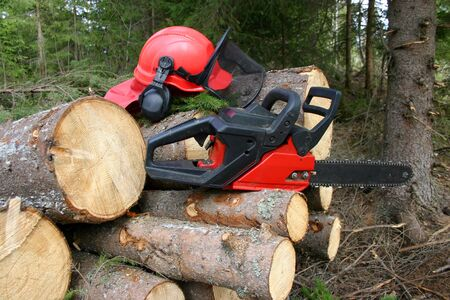 logger: Logger equipment with cut trees