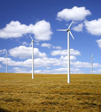 Wind power farm on a field