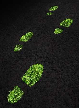 Green grass growing footprints on black asphalt photo