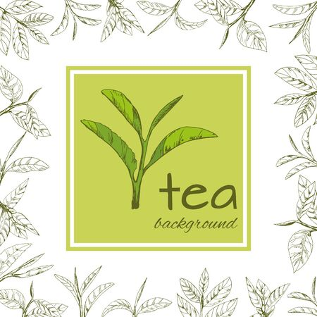 vector background with tea logo, hand-drawn leaves and branches of tea Stock fotó - 133398407