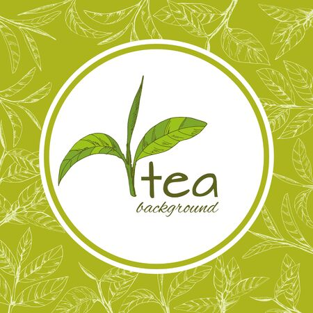 vector background with tea logo, hand-drawn leaves and branches of tea