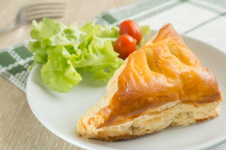 Chicken pie on plate photo