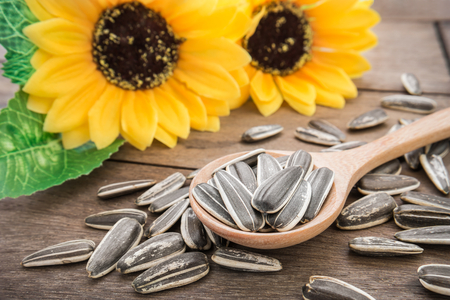 sunflower seeds: Sunflower seed on wooden spoon Stock Photo