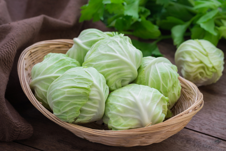 the cabbage: Cabbage in basket on wooden table