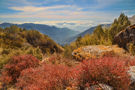 Vast mountain landscape with red vegetation and rocks in the foreground. The Himalayas, Langtang, Nepal
