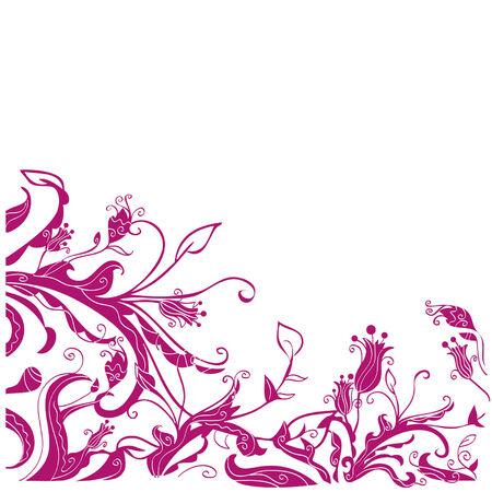 fuchsia: flower pattern