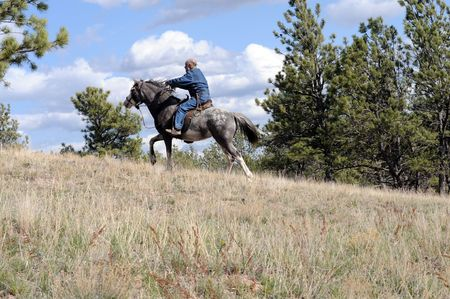 trained: man endurance riding a trained Spanish Mustang