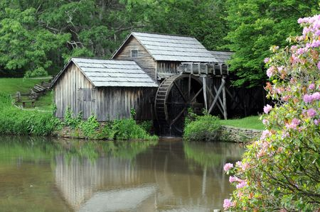 edifice: Old water mill by pond with pink wildflowers Stock Photo