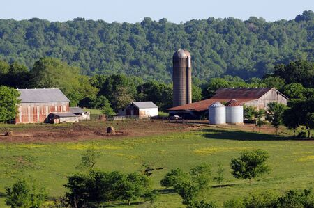 historic southern working farm set against dense forest