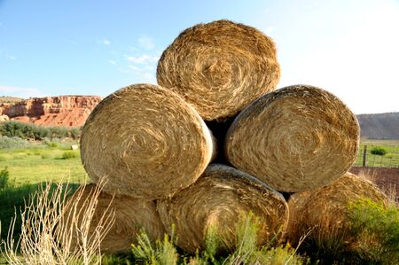 ranching:  big rolls of hay against greenery and distant orange limestone mountain