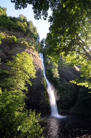 gush: Horsetail Falls splashes down amid lush greenery at Columbia River Gorge Stock Photo