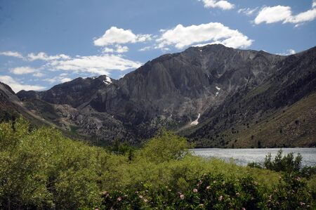 Convict Lake, California with shrubbery and flowers in foreground, stark and craggy mountains in background against blue skies with white clear sky, and lake in the center.