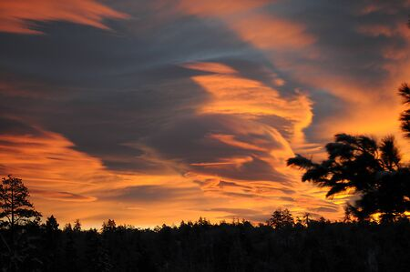 the firmament: Red, gray and orange clouds fill the sky above a silhouetted mountain forest at sunrise.