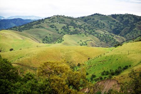 yellows: Soft verdant hills and trees of greens and yellows flow into background of distant mountains in springtime. Stock Photo
