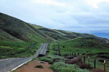 Countryside road runs through spring green network of rolling hills and barbed-wire fencing.