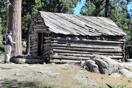 Day hiker admires old gray weathered 1800s log cabin in woods near Bluff Lake, California.