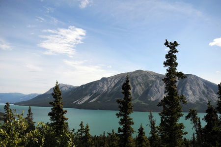 Glacial fed azure blue Tagish Lake, Alaska, fronted by lush green trees with mountains in background. Stock Photo