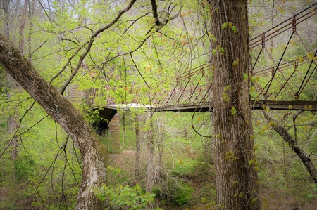 Tangled green dense forest nearly obscures the aged Tishomingo stone and wood swinging bridge.
