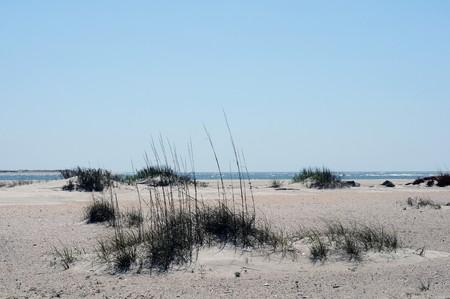 Het brede en lange zandige geïsoleerde strand dichtbij Moorehead, Noord-Carolina, met dunne vegetatie kijkt eenzaam.