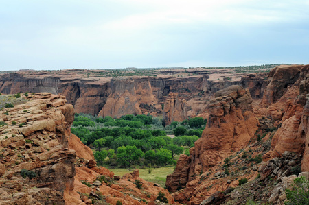 desert ecosystem: Colorful outcroppings with greenery and mesa against blue sky at Canyon de Chelly, Arizona.