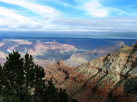 Gevarieerde gekleurde formaties in Grand Canyon National Park, Arizona met groene boom op de voorgrond. Stockfoto