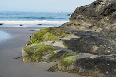 Green moss covered coastal rock formation in Southern Oregonbares itself at low tide. Stock Photo