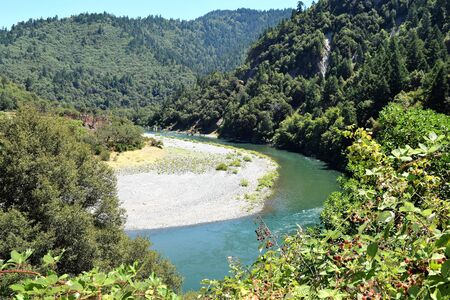 Klamath River, Oregon, Curves amid Deep Forest with Berry Bushes in Foreground 写真素材 - 132049293