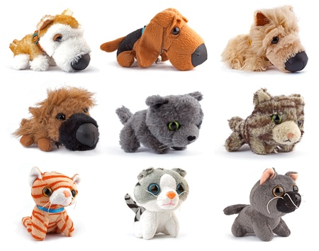 softness: Softness Toys, cats and dogs isolated on white background Stock Photo