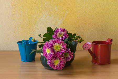 watering pot: Still life with flower and watering pot over grunge background