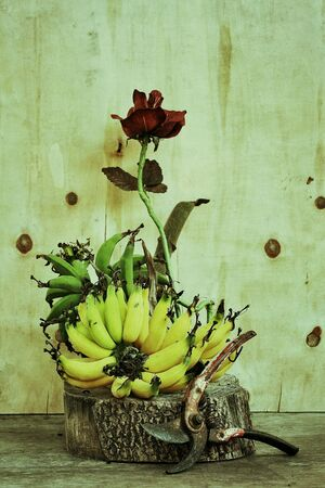 grunge: Still life with flower and fruits on grunge .