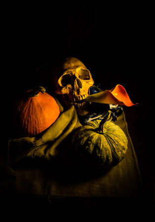 corpse flower: still life of skull,pumpkins  and flower on fabric