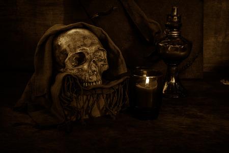 skull biology: still life with skull  on dark background